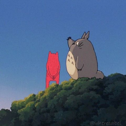 Adventures with Abel and his friend Totoro